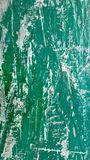 A green vintage  surface Royalty Free Stock Image