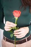 Green sweater with red rose Royalty Free Stock Photos