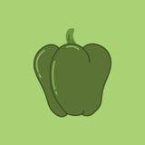 Green Sweet Bulgarian Bell Pepper. Paprika  Vector Illustration Stock Image