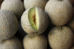 Green Sweet Melon fruit Royalty Free Stock Photography