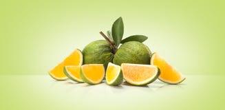 Green sweet oranges fruit Royalty Free Stock Images