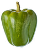 Green sweet pepper Stock Photography