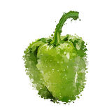 Green sweet pepper of blots  Stock Images
