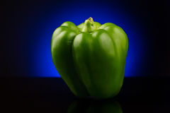 Green sweet pepper on blue background Royalty Free Stock Images