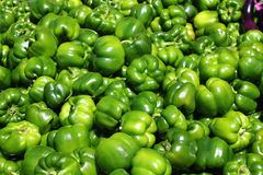 Green sweet pepper, cooking raw material. Royalty Free Stock Image