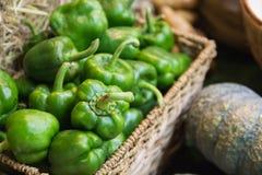 Green sweet pepper Stock Photo