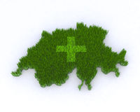 Green switzerland with grass Royalty Free Stock Photo