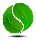 Yin Yang Green Symbol Logo. Green Symbol concept using Yin Yang in a leaf design Royalty Free Stock Photo