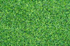 Green synthetic grass sports field Stock Photography