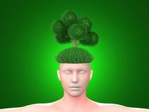 green tänker Arkivbild