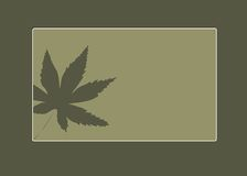 green tło ilustracji