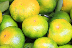 Green tangerine Stock Photo