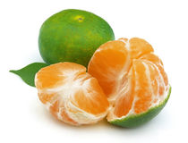 Green tangerines Royalty Free Stock Photography