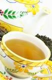 Green tea. Stock Images