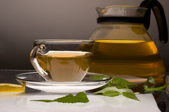 Green tea. Drink series: glassy cup of tea and teapot royalty free stock images