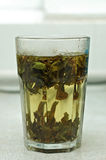 Green Tea. Tea is the most favorite drink, and has a long history and profound cultural connotations Stock Photo