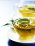 Green tea. In a transparent cup with leaf Stock Photography