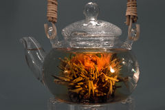 Green tea. Chinese green tea in a glass teapot Stock Photos