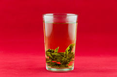 Green tea. In a white cup with a tea leafs Royalty Free Stock Images