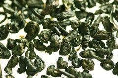 Green tea. Leaves background on white stock photos