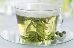 Free Green Tea Stock Images - 49492224