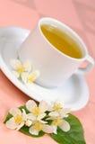 Green Tea. With Jasmine flowers. Shallow DOF Stock Photography