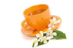 Green Tea. With Jasmine flowers. Shallow DOF Stock Photo