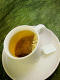 Green tea. A white tea-cup with tea bag of green tea on greenish background stock photos