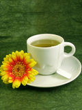 Green tea. White tea-cup with green tea and yellow-orange flower on greenish background royalty free stock images