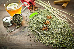 Green tea and aromatic spice for decoration Royalty Free Stock Image