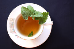 Green tea with a balm Royalty Free Stock Photo