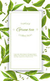 Green tea banner Royalty Free Stock Photo
