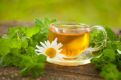 Green tea in beautiful cup Royalty Free Stock Photography