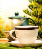 Green Tea Break Means Drink Refreshing And Cafeteria royalty free stock photo