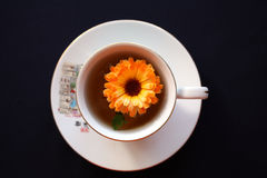 Green tea with a bright flower Stock Photography
