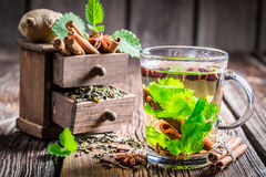 Green tea with cinnamon bark Royalty Free Stock Photos