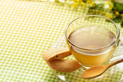 green tea with cookie on green fabric table. Royalty Free Stock Photo