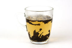 Green tea and cup of tea Stock Photography