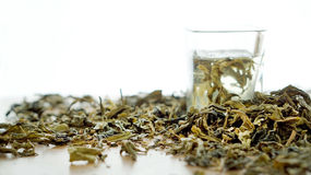 Green tea dried leaves with hot water shot Stock Image