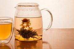 Green Tea Flower royalty free stock image
