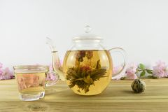 Green tea with flower bloom inside a glass teapot stock images