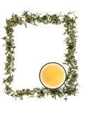 Green tea frame and cup of tea. Green tea leaves forming a border for labels or even signs Stock Photos