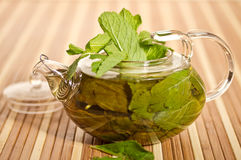 Green tea with fresh mint Royalty Free Stock Photo