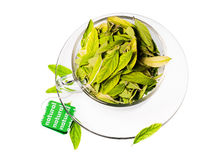 Green tea freshness stock photo