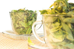 Green tea freshness Royalty Free Stock Image