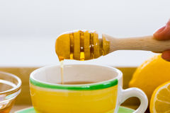 Green tea with ginseng and sage set Royalty Free Stock Photo