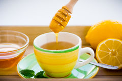 Green tea with ginseng and sage set Stock Image