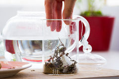 Green tea with ginseng and sage set Royalty Free Stock Photos