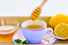 Green tea with ginseng and sage set Stock Photography