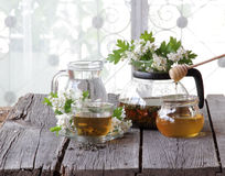 Green tea in a glass cup, honey and a branch of a blossoming haw Royalty Free Stock Image